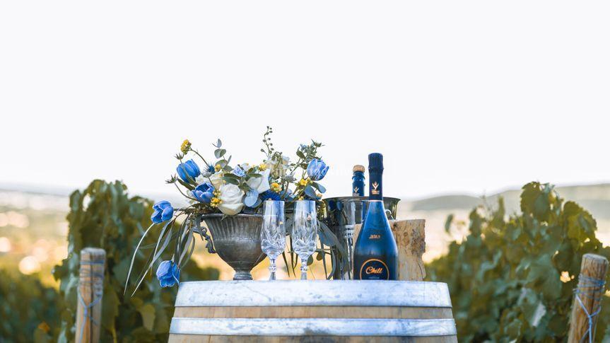 Champagne dans les vignes