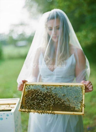 Miel récolté en Normandie