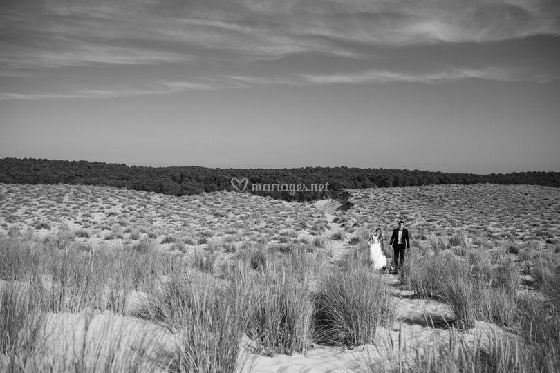 De l'amour et du sable
