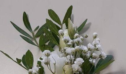 Fleurs & D'Lys 1