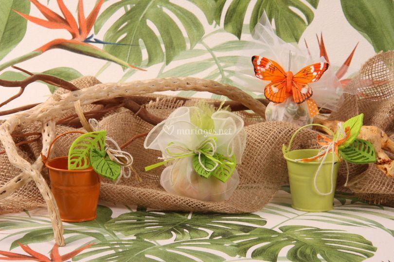 Extrait de collection tropical