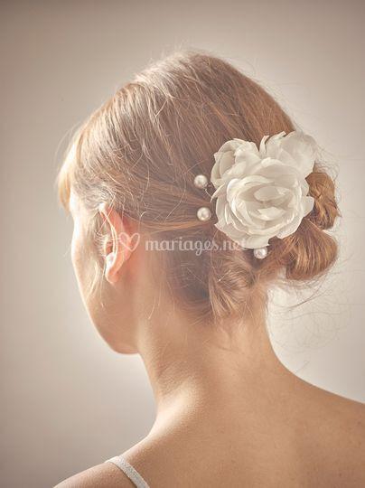 Pics à cheveux