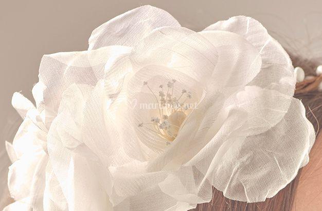 Rose de soie