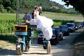 Art et Photos Provence