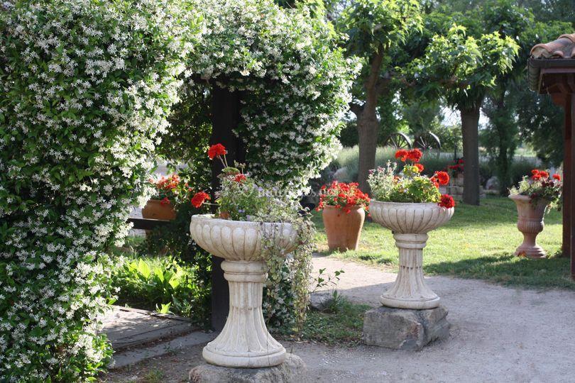 Un jardin Vert et Fleuri