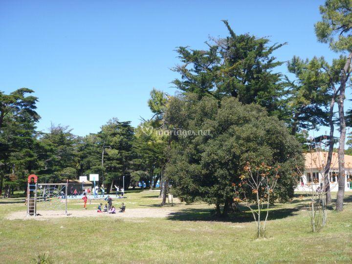 Vue sur le parc
