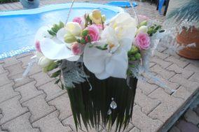 Sophie - Créations florales