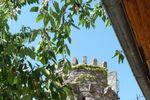 La tour sur Ch�teau de Ventavon