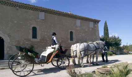 Provence-Caleche-Tradition