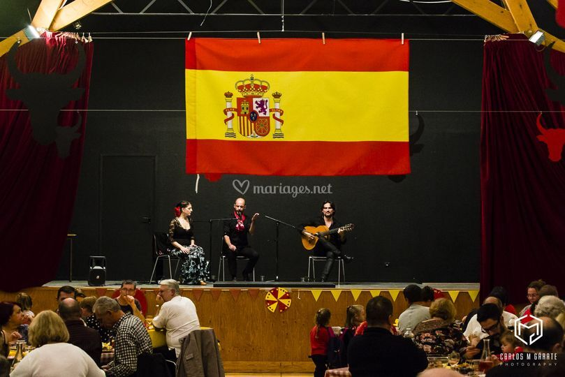 Animation Flamenco