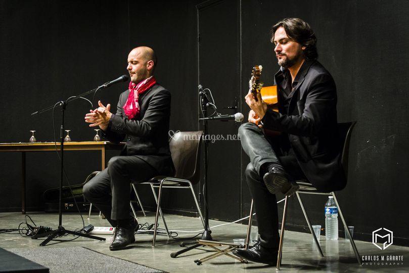 Guitariste flamenco