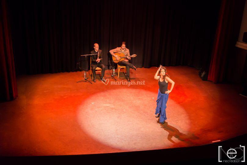 Spectacle flamenco Paris