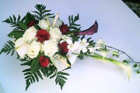Fleurs à Fleurs