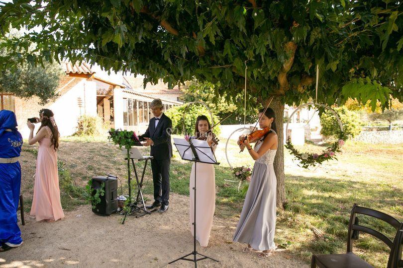Violoncellistes