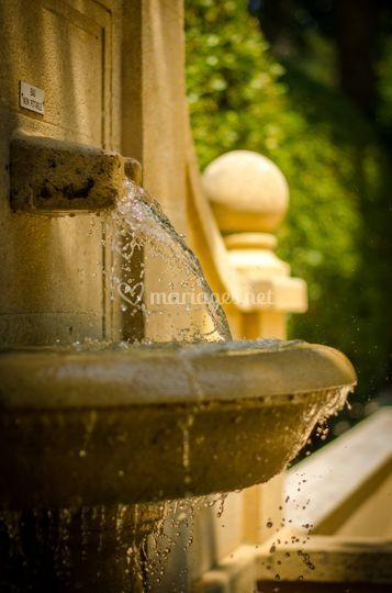 Fontaine à l'ombre