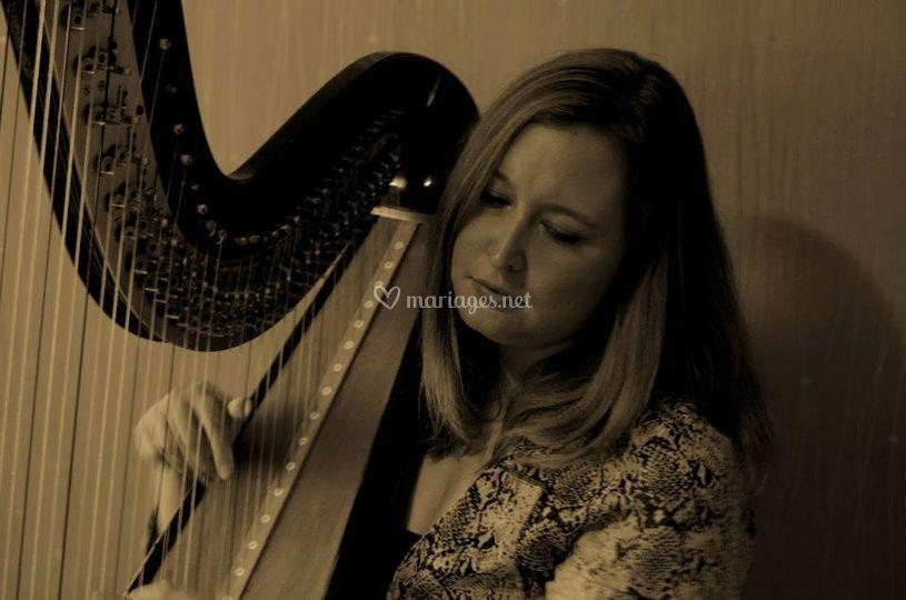 Harpe 5