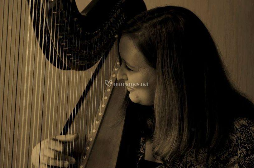 Harpe 6