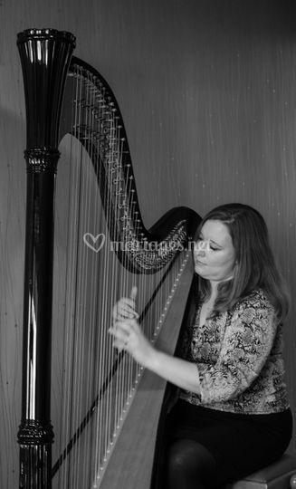 Une jolie harpe