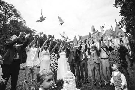 Un l�cher de colombes pour votre mariage