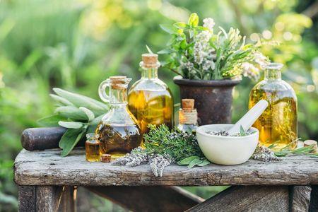 8 plantes au service de votre beauté : savoir les repérer