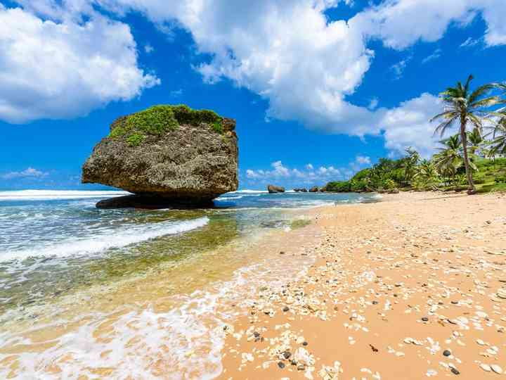 Voyage de noces à la Barbade : l