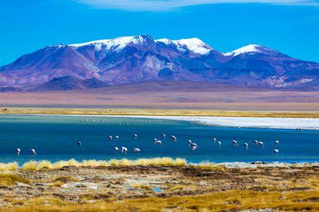Lune de miel au Chili : un bout du monde à la diversité époustouflante