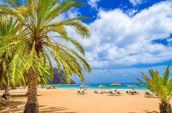 Les Canaries, des îles paradisiaques pour votre lune de miel!