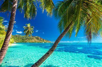 Lune de miel polynésienne :  Tahiti, la perle du Pacifique