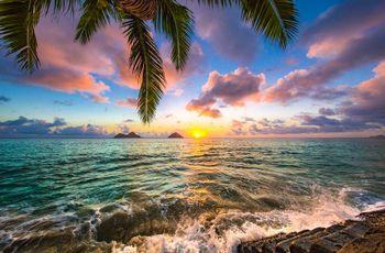 Lune de miel à Hawaï : archipel volcanique de rêve aux paysages variés