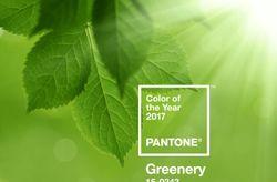 Greenery : invitez la couleur de 2017 à votre mariage