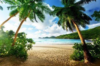 Lune de miel aux Seychelles : la belle vie sous les cocotiers !