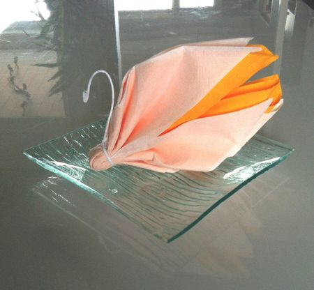 Tutoriel pliage de serviette en forme de cygne