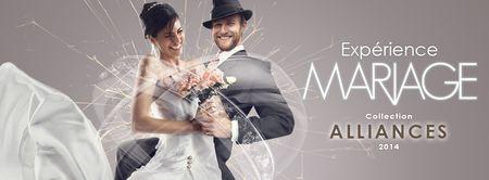 Alliances de mariage Histoire d'Or collection 2014