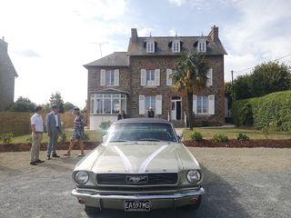 Mustang66 4