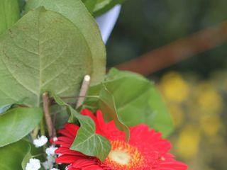 Les Fleurs de Julie 5