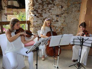 Ivana String Quartet 3