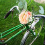 Akane 'le murmure des fleurs' 13