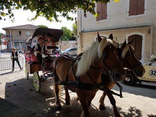 Les Calèches D'Artagnan 1