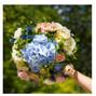 Le mariage de Jeremy Yon et Le Clos des Roses 26