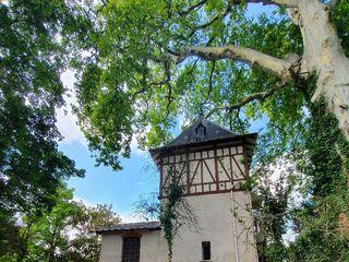Château Saint Marcel 4