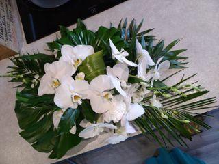 Kanis Fleur 4
