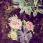 Le mariage de Sophie de Burgh et Lily Rose 15
