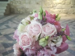 Audace florale 1