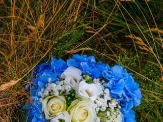 Mireille Fleurs et Nature 5