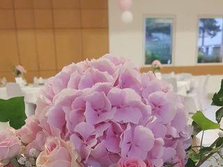 Aloé Fleurs 2