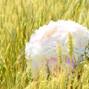 Le mariage de Céline Bellet et Atelier d'Art Floral Munier 10