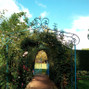 L'Orangerie de Vatimesnil 6
