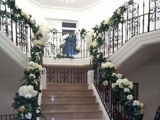 Villa Diana 2