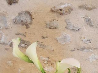 Les Fleurs d'Auré 5