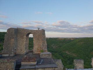 Château de Roussillon 6